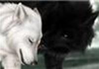 puppylover1875