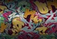 shendulure2000