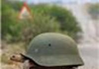 TortoiseOfWar