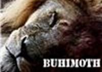 buhimoth
