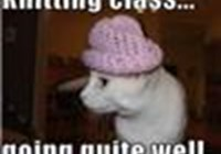 kittycatz2141