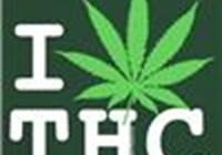 Cannabis_babe