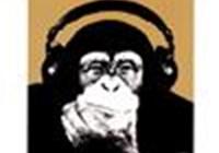 MonkeyManFIN