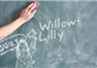 Willow-Lilly