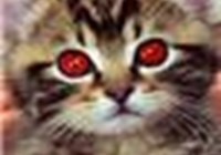 Biellzebub avatar