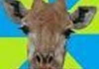 drunkengiraffe