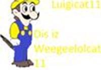 Luigicat11