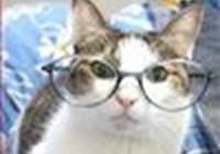 OHgrammyIO avatar