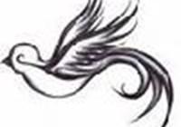 songbird0530