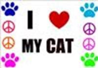 catlovescats