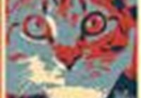 new_moon_cat avatar