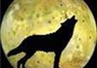 Chedderwolf