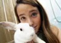 Bunnybrinkles