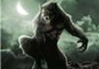 Dark_Wolf234