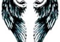 birdy16