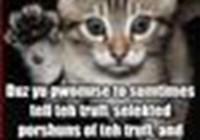 rhochmancat