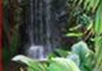 mysti5 avatar