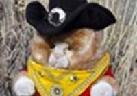 Poohdence avatar