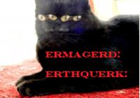 feline-ethnobiologist avatar