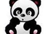 pandabearwin