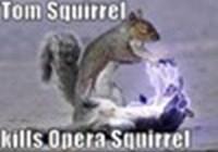 Mesquirrel