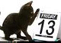 scaredycat13