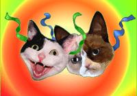 bgcmeowrrrr avatar