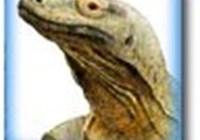 Geckonator