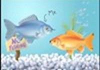 A_Cursing_Fish