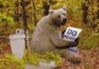 BearsDontPoo