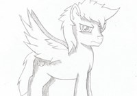 nimbus92 avatar