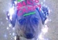 BanjoCandy