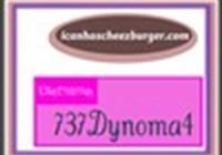 737Dynoma4