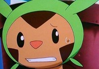 Chespin242