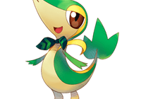 Solid_Snivy