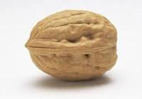 Walnut1009