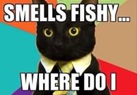 Derpy_Fish
