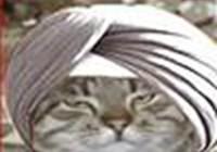 turbincat