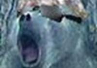Danoz avatar