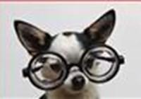 Selina2 avatar