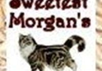 SweetestMorgan